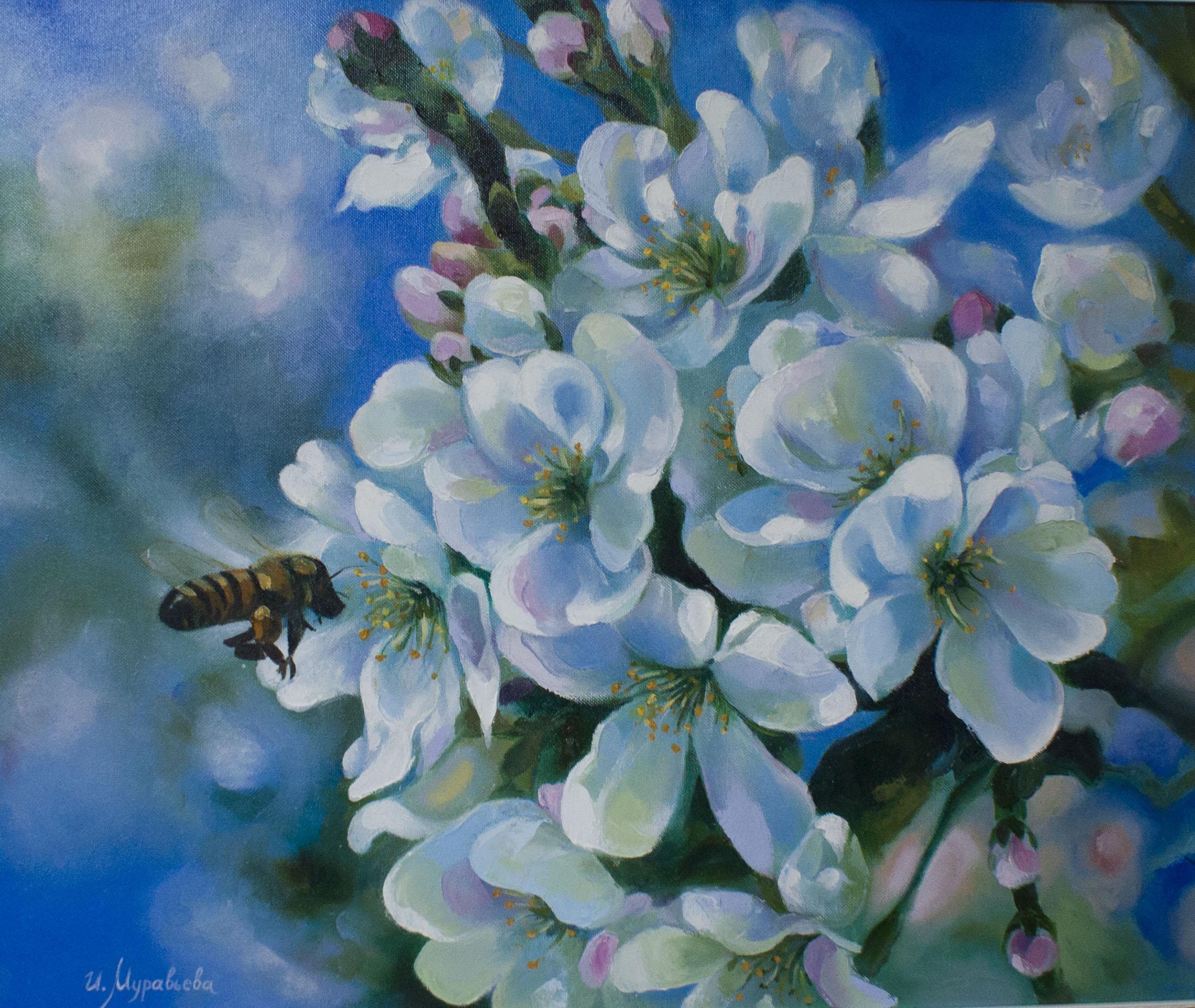 Холст, масло. Живописная работа с изображением цветущей яблони крупным планом.